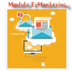 module e-marketing