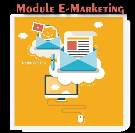 module e-marketing